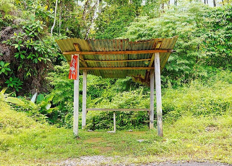 Werkreihe PARADA DE AUTOBUS . Peninsula Osa . 0055